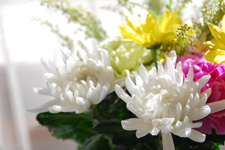 命日の過ごし方|葬儀・家族葬なら【よりそうお葬式】
